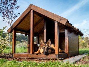 Holz Hundehütte
